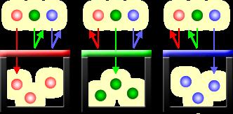 Photosites with Color Filters (Photosites dengan Filter Warna)