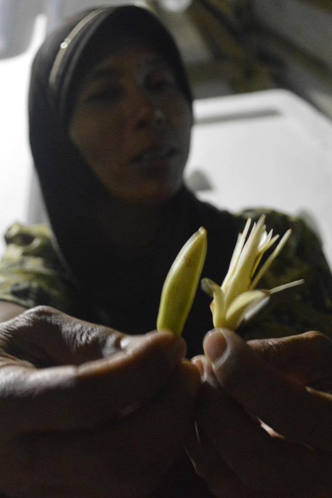 Bunga Kanthil